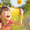春のおすすめ絵本。好奇心いっぱいの2歳児に!!